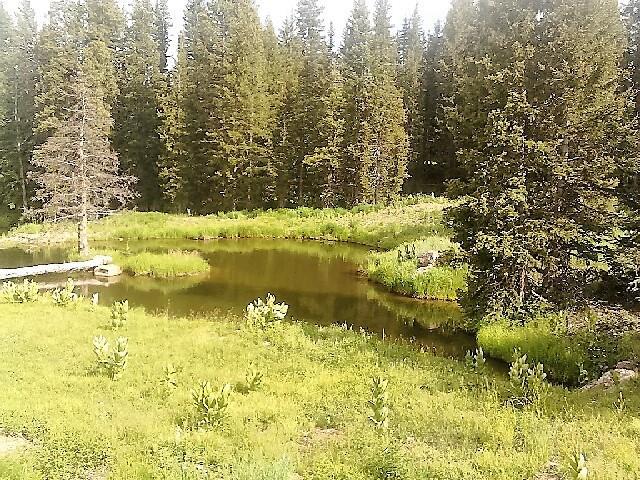 Private road brazos meadows chama nm 87520 mls 201602632 for Brazos river cabins