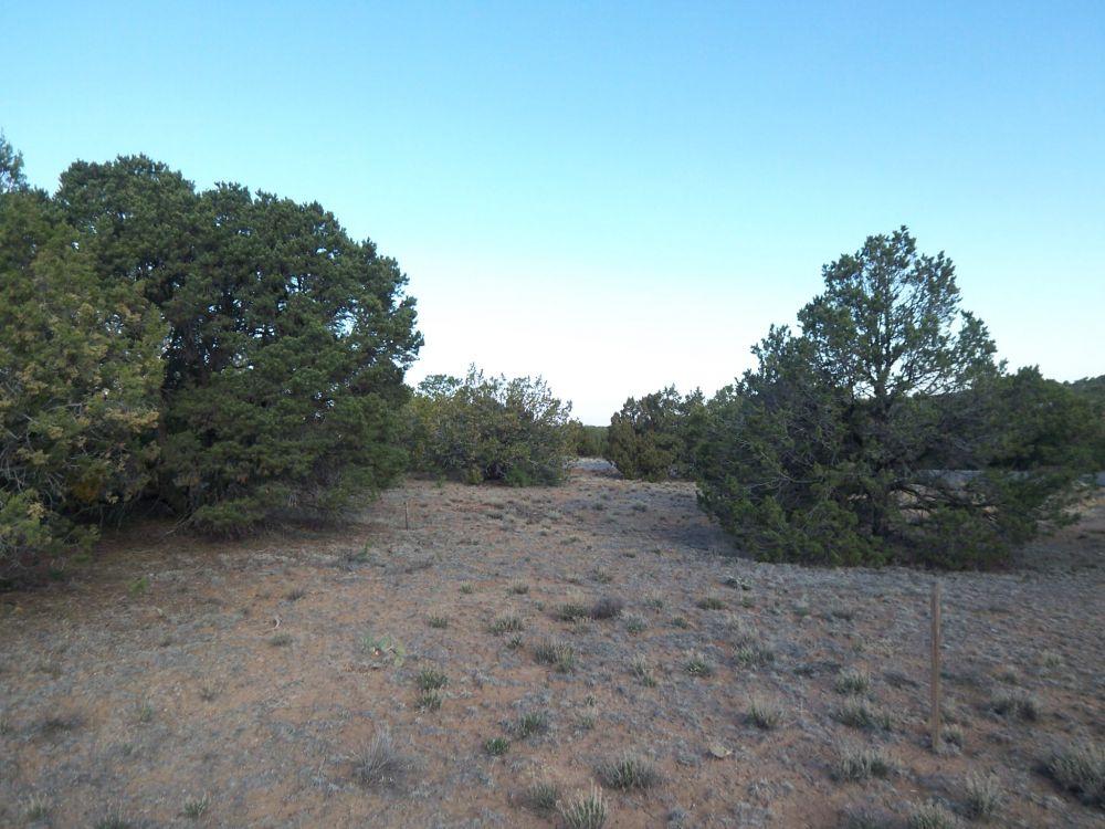 24 Calle San Acacia, Santa Fe, NM, 87501 MLS #201301895