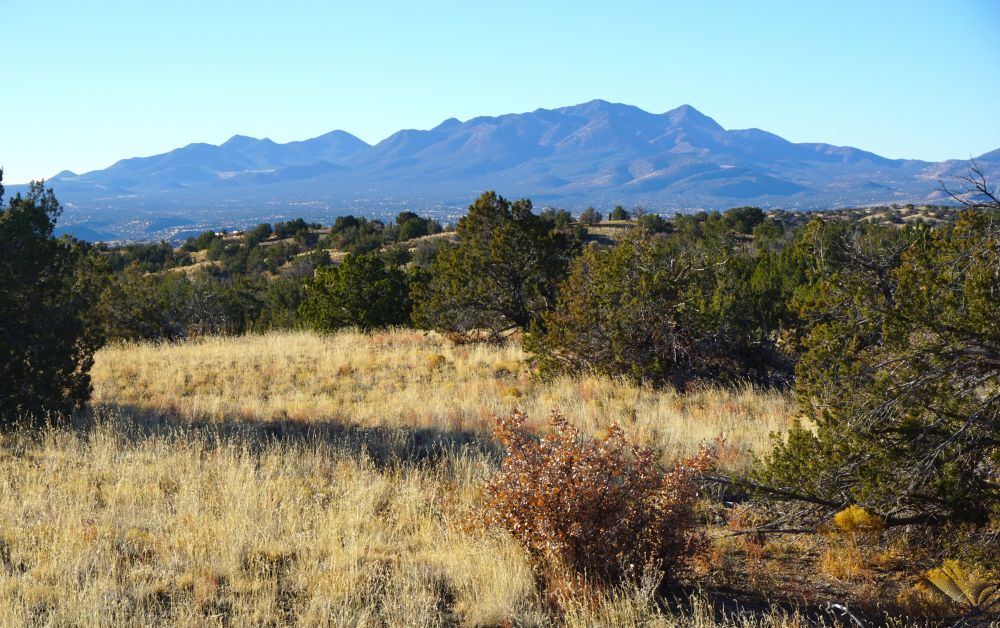 Lot 39 Bonanza Trail