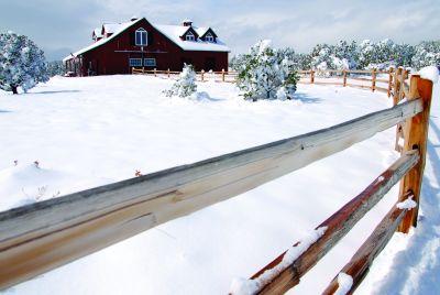 Winter Scene and Barn