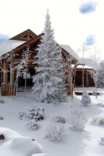 Entry Snow