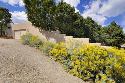 The driveway is lined with chamisa, the indigenous yellow Santa Fe shrub...