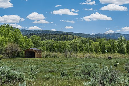 MEADOW AND STORAGE SHED