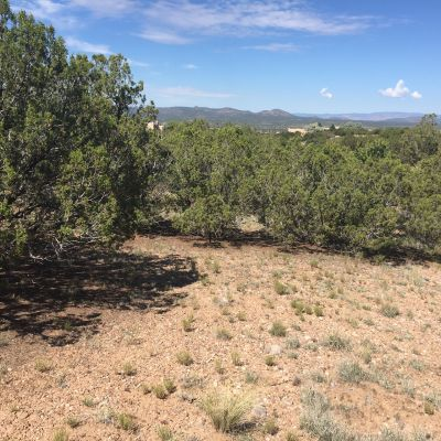 Jemez Mountain Views from Lot 443