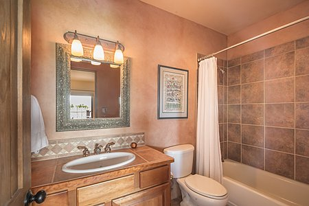 Guest Bathroom on lower level