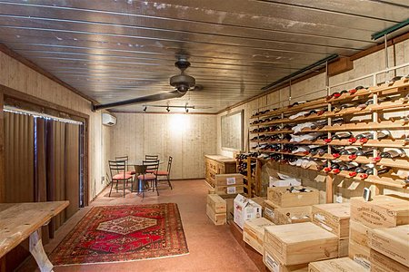 Wine Cellar and Bonus Room