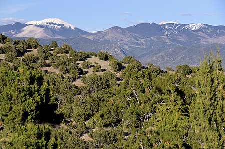 View to Sangre de Cristo Mountains from Guest House & Guest Suite